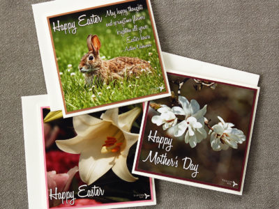 Easter / Mother's Day / Spring Cards